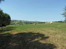 azienda agraria in Maremma Toscana