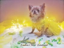 Loulu Chéri Boutique abbigliamento e...