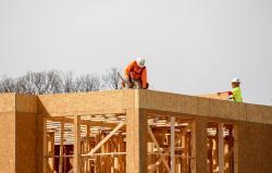 Tecnico - artigiano settore carpenteria in legno