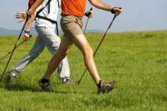LEZIONI E CORSI DI WALKING E NORDIC WALKING LEZIONIECORSIDIWALKINGENORDICWALKING12.jpg