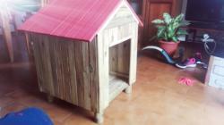 Cuccia nuova in pino per cane medio piccolo impermeabilizzata