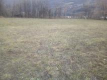 Terreno Agricolo pianeggiante mq 17000 + stalla