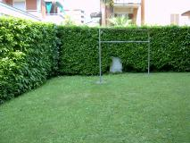 Affittasi 2.5 locali Lugano piano terra con giardino Affittasi25localiLuganopianoterracongiardino-5a59136c9b074.jpg