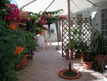 Sardegna mare Penisola del Sinis casa piano terra con giardino anche 2 case affi