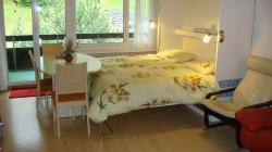 Appartamento Vacanze Davos 2.5 Stanze/Piscina AppartamentoVacanzeDavos25StanzePiscina-59b3a3722245a.jpg
