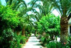 Vacanze mare Sicilia,in bilo in parco...