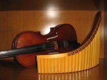Lezioni di Violino e/o Flauto di Pan -...