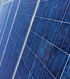 Pannelli solari Canadian Solar 235 WATT PannellisolariCanadianSolar235WATT.jpg