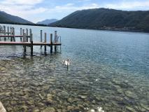 Bellissimo moderno 2.5 vista lago, dotato di ogni confort! Bellissimomoderno25vistalagodotatodiogniconfort-5b7bd05e46c1b.jpg