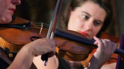 Violinista a Gambarogno