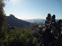In Sardegna a Baunei terreno...