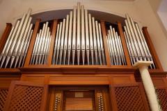Organista e soprano per cerimonie religiose a Biasca