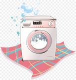 Appassionato di lavatrici