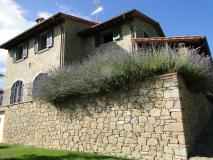 Splendida Villa in Toscana SplendidaVillainToscana-5a7ec07eb877a.jpg