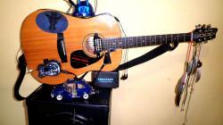 Artista Musicista offresi per intrattenimento musicale