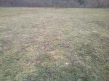 Terreno Agricolo di mq 9500