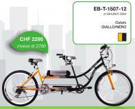 bicicletta pedalata assistita tandem