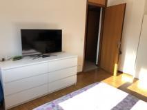 Cercasi urgente subentrante grazioso appartamento Lugano