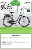 bicicletta pedalata assistita da donna e da uomo
