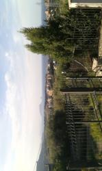 Sicilia: terreno edificabile per costruzione villa singola Siciliaterrenoedificabilepercostruzionevillasingola12.png