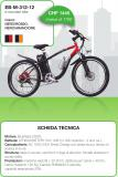bicicletta pedalata assistita mountain bike