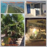 Affitto case vacanze al mare sul Gargano Puglia Italia AffittocasevacanzealmaresulGarganoPugliaItalia-59a56b8c7bc9e.jpg