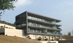 LUXURY apartment MOntagnola
