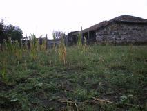 Vendo casa in bulgaria  due ore da sofia